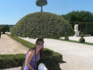 In the Park of Versailles - trimmed tree